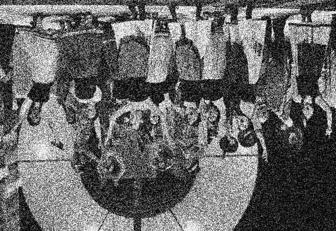 Perikola, upravená, foto Jana Hallová