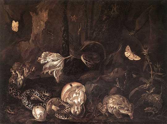 Zátiší s hmyzem a obojživelníky, Otto Marseus van Schrieck, 1662